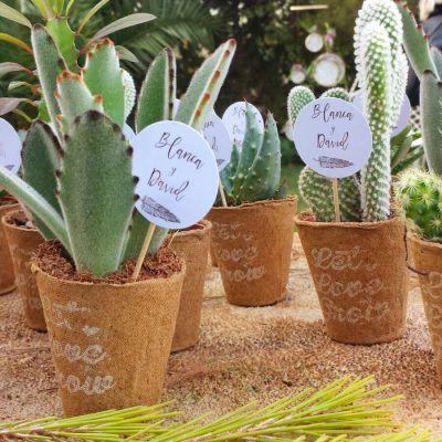 Maceta Biodegradable: para personas con corazón verde